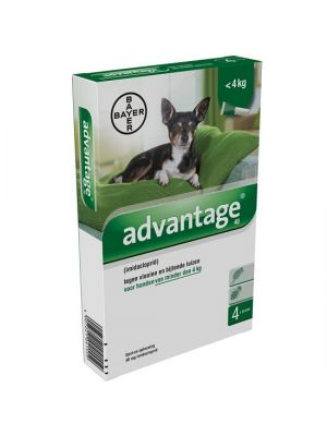 Bayer Advantage Hond 4 Pipetten 40 Tot 4 KG